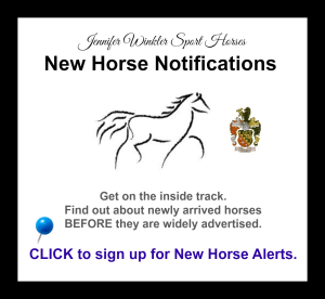 NEW HORSE NOTIFICATIONS