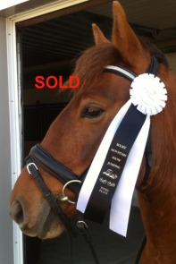 sold-2