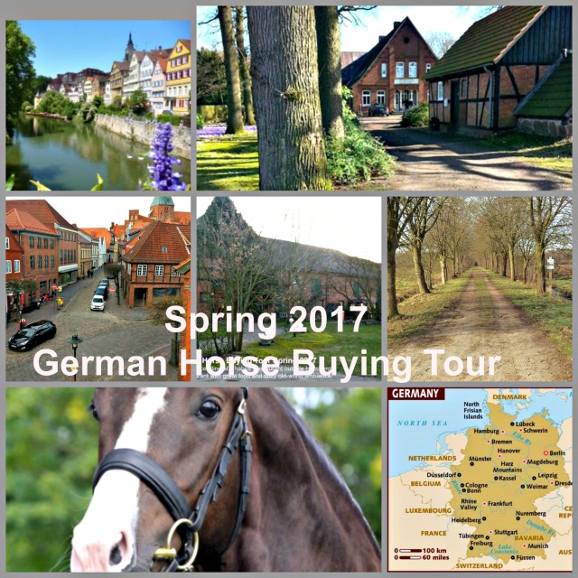Spring 2017 buying tour
